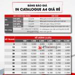 Bảng giá in catalogue giá rẻ tại Tp. HCM