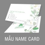 MẪU CARD ĐẸP 2019